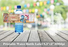 Sheriff Callie water bottle labels Sheriff Callie bottle