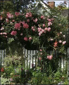 Cottage Garden Gates