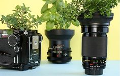 vaso lente câmera profissional