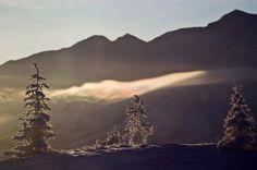 Les températures les plus froides ont été enregistrées dans la vallée d'Oïmiakon. Selon le Met Office de Grande-Bretagne, une température de -67,8°C y a été mesurée en 1933. Crédits photo : MAXIM SHEMETOV/REUTERS