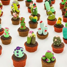 Thomas C. Chung  - an installation of stitched succulents - Knitted