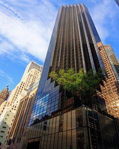 Trump Tower, Fifth Avenue, Manhattan, NYC, USA Es un rascacielos de uso mixto (oficinas y residencias) de 206m de altura (58 plantas). Es la residencia de Donald Trump, quien vive en el ático de la torre, un lujoso apartamento de tres pisos.  Follow us: @arqillusions