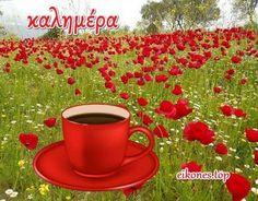 Εικόνες καλημέρα με άρωμα Πάσχα! - eikones top Beautiful Pink Roses, Good Morning, Buen Dia, Bonjour, Good Morning Wishes