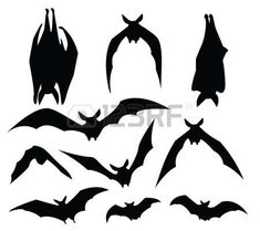 Illustration of bat silhouette of various movement, for design usage. vector art, clipart and stock vectors. Halloween Drawings, Halloween Bats, Halloween Decorations, Halloween Stickers, Halloween Projects, Halloween 2019, Halloween Stuff, Halloween Costumes, Bat Silhouette