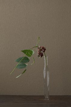A single stem