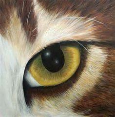 (23) cat painting | Tumblr