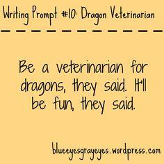 Writing Prompt #10 ; Dragon Veterinarian. Blue Eyes, Gray Eyes. #writingprompt