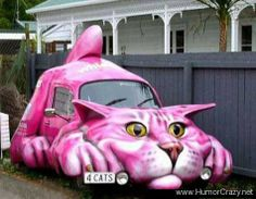 ♥♥♥TEMP♥ 116 funniest animals in the world | Funny Looking Cat Shaped Car