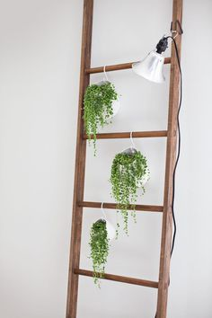 I already use my ladder for blanket storage but the plant idea is a pretty tempting switch (A Beautiful Mess)