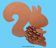 scoiattolo-pigna2