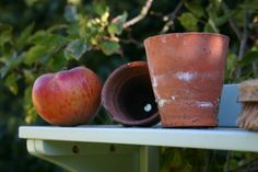 apple and pots