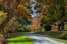 Vermont Fall Colors | Dirt Road Through Vermont Fall Foliage is a photograph by Jeff Folger ...