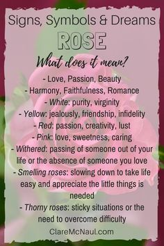 The Rose symbol presents in mediumship readings a lot. Have you received a rose in your dreams? Have you seen a rose in your psychic readings? Here are some thoughts on the symbolism of rose. Dream Psychology, Psychology Facts, Symbols And Meanings, Tarot Card Meanings, Dream Interpretation Symbols, Facts About Dreams, Dream Symbols, Dream Meanings, Jokes And Riddles