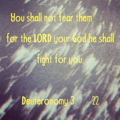GOD SHALL FIGHT FOR YOU  You shall not fear them: for the LORD your God he shall fight for you.  Deuteronomy 3:22