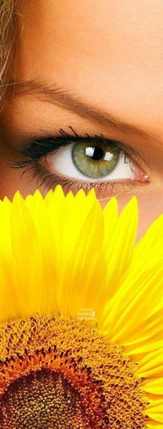 Sunflower Garden, Sunflower Flower, September Themes, Romantic Table Setting, Look Into My Eyes, Gladiolus, Yellow Fashion, Beautiful Mind, Shades Of Yellow