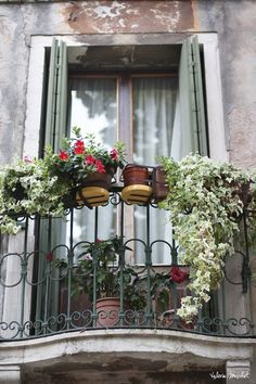 Venice - a balcony is about life! www.sugarbakers.asia