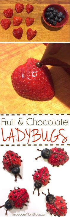 These easy fruit ladybugs make eating fruit fun! A healthy snack or dessert for kids that they will love to eat!These easy fruit ladybugs make eating fruit fun! A healthy snack or dessert for kids that they will love to eat! Cute Food, Good Food, Yummy Food, Snacks Für Party, Kid Snacks, Party Appetizers, Preschool Snacks, Lunch Snacks, Baby Snacks