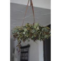 フライングリース(イタリアンベリー) - deuxR - Natural Flower - ドライフラワー,リース,花材販売, Christmas Wreaths, Christmas Decorations, Xmas, Green Flowers, Fall Wedding, Floral Arrangements, Wedding Flowers, Diy Crafts, Display