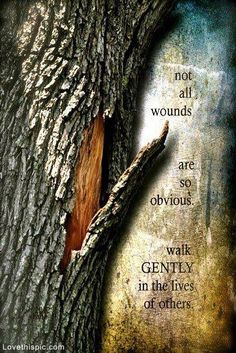 Walk Gently in the Lives of Others quote people hurt life quote kind wisdom gentle others wound