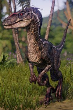 - My best shares Prehistoric Dinosaurs, Prehistoric Creatures, Dinosaur Art, Dinosaur Fossils, Tyrannosaurus, Indominus Rex, Illustration Photo, Illustrations, Spinosaurus