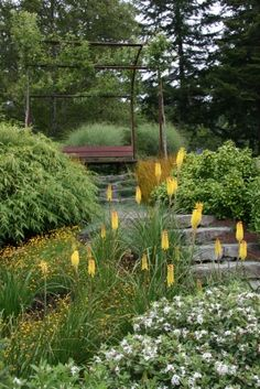 Ipe bench, steel arbor with pears, basalt steps. An Oregon coast garden. Mosaic-gardens.com