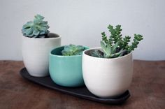 Beautiful planters from clamlab; $65.00