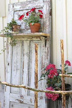 Old Chippy Door...with a rustic shelf filled with garden plants.