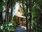 We offer secluded self catering accommodation in the Drakensberg. Hiking in the Drakensberg. Self catering accommodation in the Drakensberg in the Champagne Valley. South Africa, Catering, Wanderlust, Hiking, Patio, Outdoor Decor, Plants, Travel, Walks