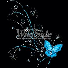 BUTTERFLY FLYING BLUE | The Wild Side