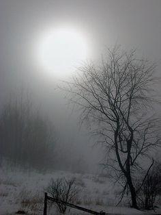 .La bella luna by Gisèle Bédard.  Absolutely stunning!