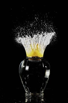 Have you tried out high speed flash photography? What do you think of this shot, you be the judge