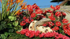 The rose parade in historic pasadena rose bowl packages rose bowl travel packages for the 2016 rose bowl parade and rose 2016 rose parade Rose Bowl Parade, Parade Floats, Topiary, Red Roses, Carnival, Packaging, Tours, Plants, Travel