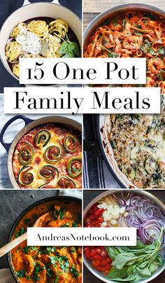 15 One Pot Family Meals - these look SOOOO good!