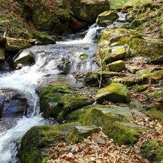 🏞 potôčik  #water #waterfall #nature #insta_svk #pod1000