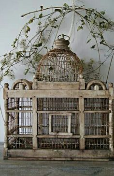 Beautiful Bird Cage Ideas for Your Garden. Beautiful Bird Cage Ideas for Your Garden. Of course the cage to be built must be adjusted to the house or garden building, so that the overall aesthe. Antique Bird Cages, The Caged Bird Sings, Villefranche Sur Mer, Vintage Birds, French Country Style, Shabby Chic Decor, Bird Feathers, Beautiful Birds, Bird Houses