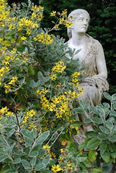 ceres in the garden of Belmont House, home of John Fowles Belmont House, Cement Statues, John Fowles, Outdoor Garden Statues, Blossom Garden, Garden Deco, Concrete Art, Backyard Retreat, Garden Structures