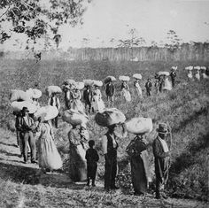 Slaves returning from a cotton field in the American South, early 1860s.