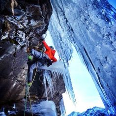tanja schmitt. Mixing ice and rock.