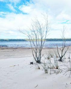 """""""We travel not to escape life but for life not to escape us. Somepöhinästä päätellen Suomessa on Matkamessut alkamassa? Kuis moni on menossa? Itsellä jää tänäkin vuonna väliin mutta kyllä mä vielä joku vuosi ennätän sinne! Kuva parin viikon takaa Australian Fraser Islandilta.  #fraserisland #queensland #thisisqueensland #australia #seeaustralia #lakebirrabeen #travel #matkalla #reissu #ulkosuomalainen #mondolöytö #adventure #seikkailu #blogipaviljonki #matkamessut #matkabloggaaja #matkablogi…"""