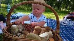 Świat z piernika: Sezon grzybowy uważam za otwarty