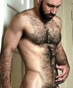 Gay bears pics hairy mexican guys porn