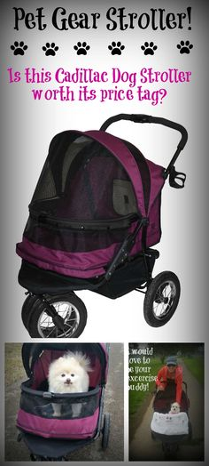 Need a mobility alternative for your dog?  Are you considering purchasing a Pet Gear Stroller...read about our experience with this true Cadillac of dog strollers before you purchase a dog stroller.