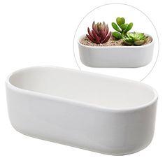 Modern Oval Design White Ceramic Succulent Plant Holder /... http://www.amazon.com/dp/B0147RQCFS/ref=cm_sw_r_pi_dp_9lYsxb0MHN5Y8