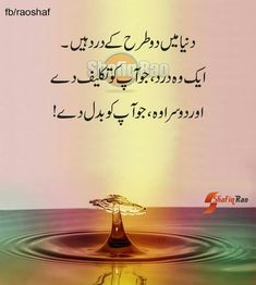 Poetry Pic, Sufi Poetry, Urdu Quotes, Quotations, Funny Quotes, Qoutes, Quotes About Moving On From Friends, Urdu Funny Poetry, Islamic Information
