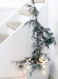 Stylish Modern Scandinavian Christmas Tree Decor Ideas 20 home Scandinavian Christmas Trees, Potted Christmas Trees, Decoration Christmas, Nordic Christmas, Noel Christmas, Modern Christmas, Simple Christmas, Winter Christmas, Minimalist Christmas