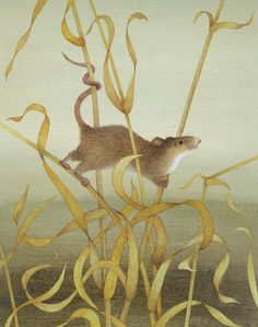 Today's advent artwork it the charming 'Harvest Mouse', watercolour and acrylic on gesso coated board, 10 x x by Harriet Bane Three Blind Mice, Harvest Mouse, Black Capped Chickadee, Asian Elephant, Canvas Paper, Bane, New Art, It Works, Watercolor
