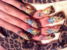 Related Pictures Metroflog Sinaloa Nails Image Search Results   HD ...