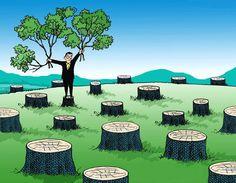 Ecología / Ecology / Reciclado / Recycling