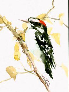 Dawny Woodpecker 12 X 9 in original watercolor painting  $27.00