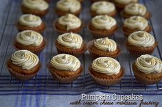 Pumpkin Cupcakes with Cream Cheese Molasses Frosting | Gluten Free on a Shoestring
